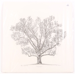 STEPHEN MALKOFF WALT DISNEY DREAMING TREE SIGNED PRINT